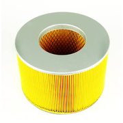 Toyota FZJ105R Landcruiser Air Filter 4.5ltr 1FZ-FE 1998-2002 *GJ*